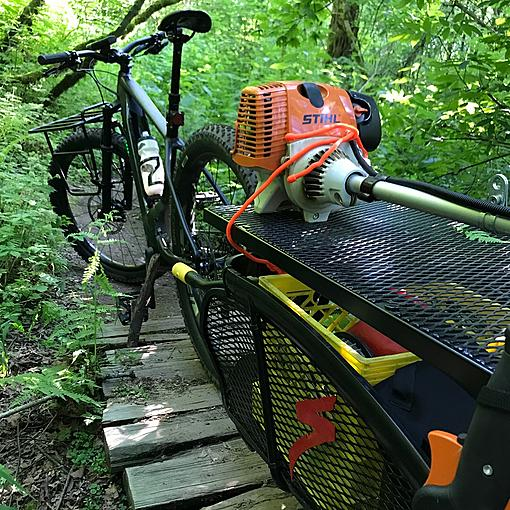 ebike with trailer in the woods.jpg