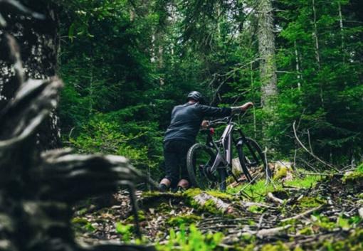 forestal ebike .jpg